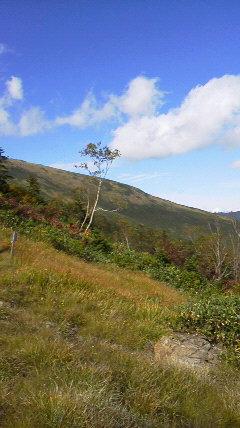 尾瀬〜至仏山